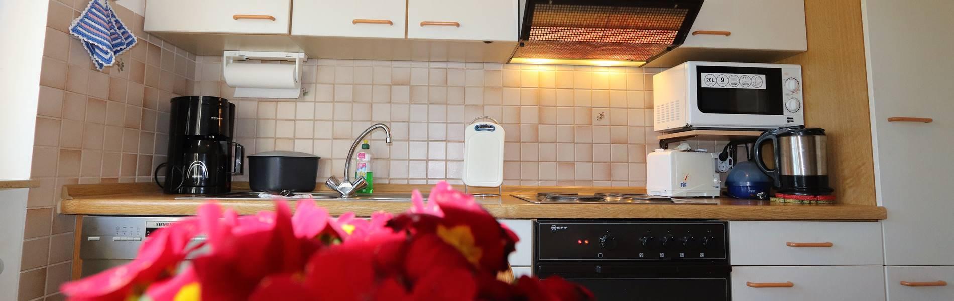 Küchenzeile Pension Schneider Ferienwohnung