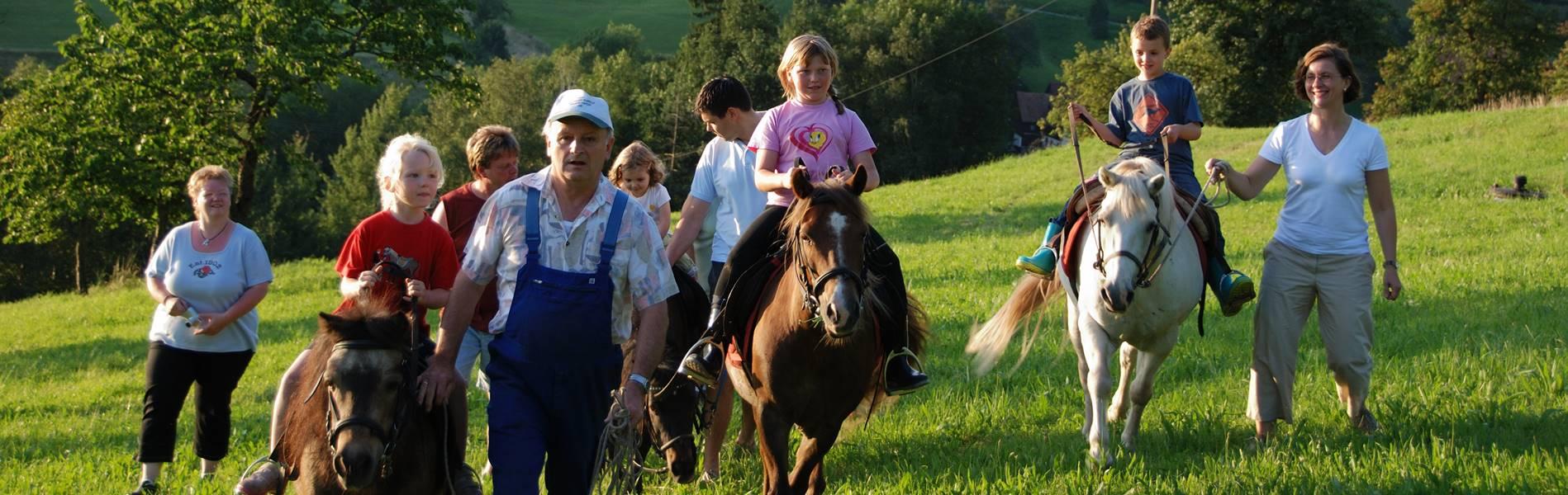 Ponyreiten Pension Schneider Freiamt
