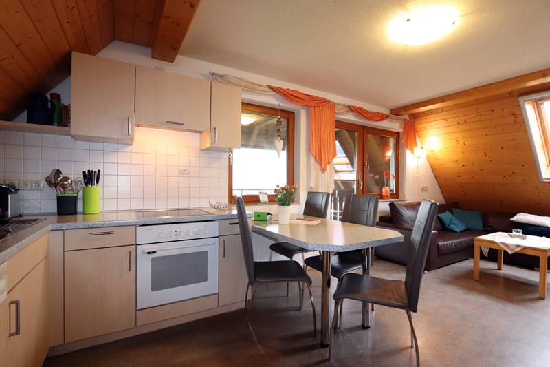 Küche in der Ferienwohnung Feldberg