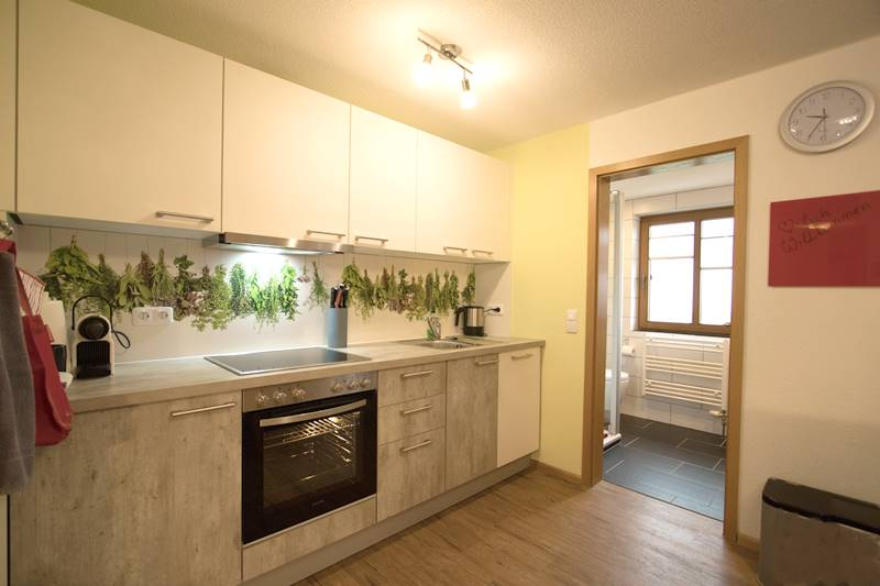 Küchenzeile in der Ferienwohnung Schauinsland